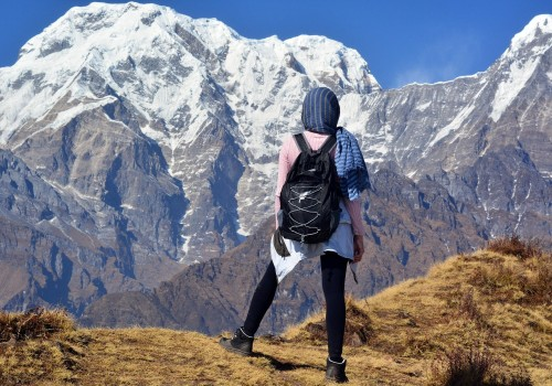 Mt. Annapurna View